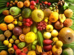 Fruits produits © Ishpingo