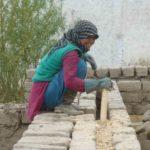 D. De la sciure de bois est tassée dans l'espace entre les deux parois des murs © Estelle Delahaye-Panchout