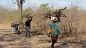 Femmes récoltant du bois de chauffage (c) ETC TERRA