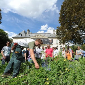 entreprise ateliers potager permaculture compostage