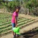2018-15 avril-jardin maraîcher de La Ancajima(c)GoodPlanet - carre ACS