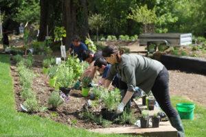 5 bonnes raison de venir ce week-end à la Fondation GoodPlanet
