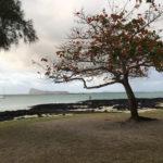 Vue sur l'île Maurice