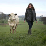 femmes agricultrices vaches
