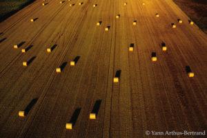 Paysage agricole dans l'Yonne, Bourgogne Franche Comté copyright Yann Arthus-Bertrand