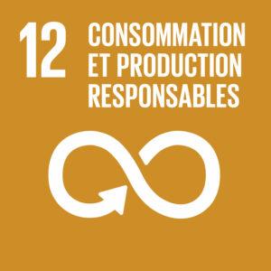 objectif de développement durable 12 carre
