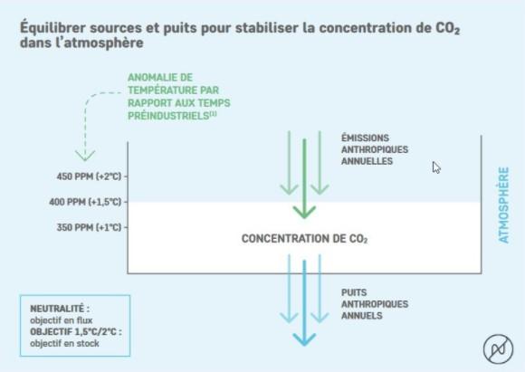 équilibrer sources et puits pour stabiliser la concentration de co2 dans l'atmosphère - Photo Net Zero Initiative