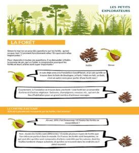 infographie explorons les forêts
